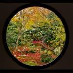 丸窓から眺める四季折々の景色でわびさびを感じる。「源光庵」