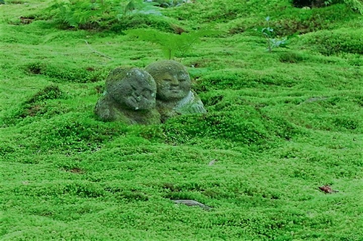 Sanzen-in, A beautiful moss garden temple
