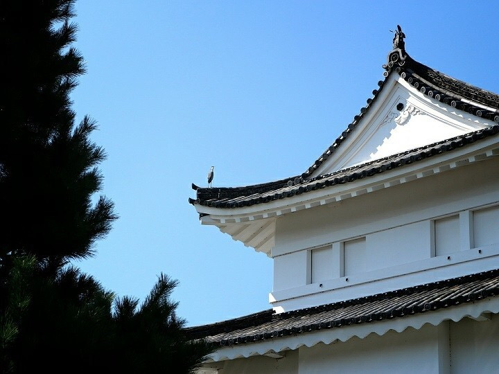 The historical Motorikyu Nijo Castle