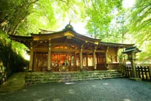 I want to conquer all of Kyoto's