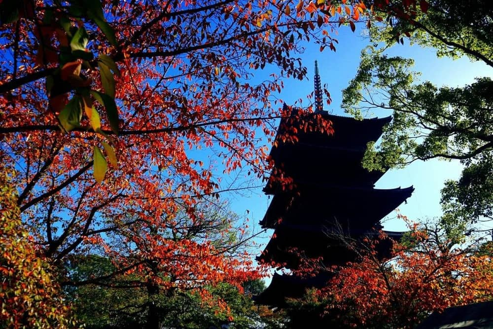 Toji; A World Heritage Site within a walking distance from Kyoto Station
