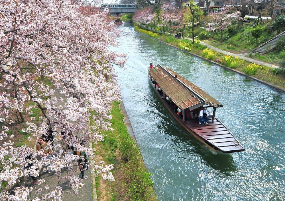 Watch Fushimi from the Fushimi-Jikkokubune・Sanjikkokubune