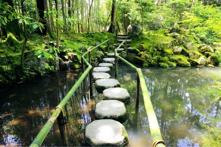 生命力にあふれた、若々しく透き通るような緑と水の庭を楽しむ「天授庵」