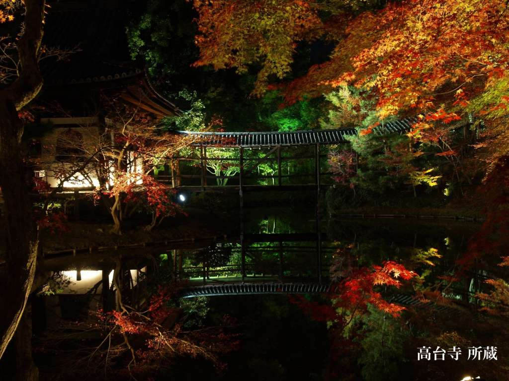 Beautiful temple garden reflects each seasonal colors -Jubusan Kodaiji
