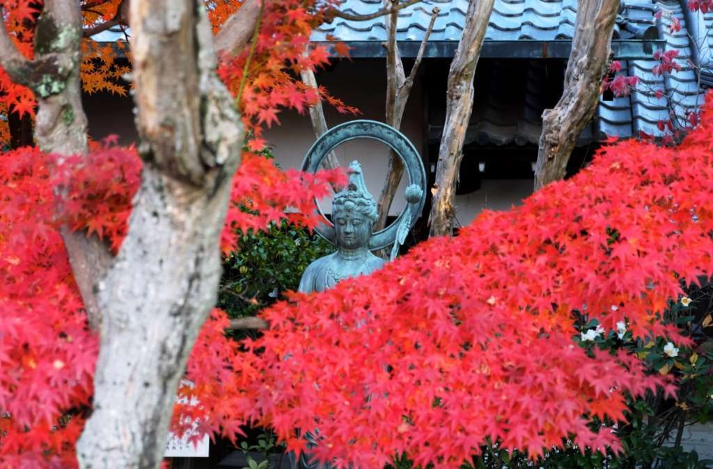 춘하추동, 1년 내내 계절의 아름다움을 느낄 수 있는 「타이조인」