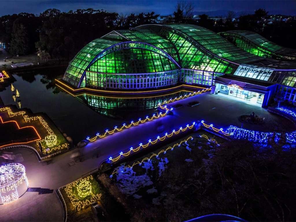 躍動感と生命力あふれる植物達が教えてくれる、季節の色の楽しみ「京都府立植物園」