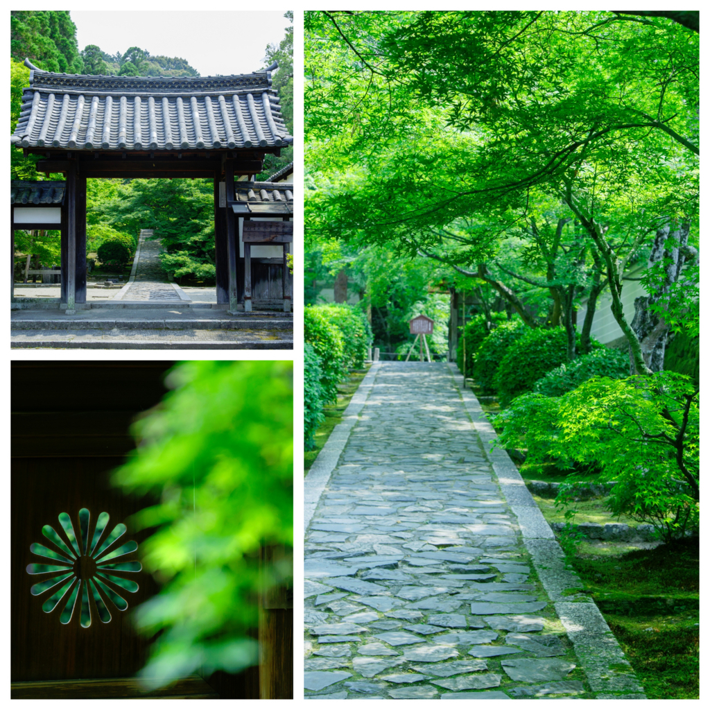 "Hidden popular spot full of art and gourmet ""Ikkyuji (Shuon-an)"