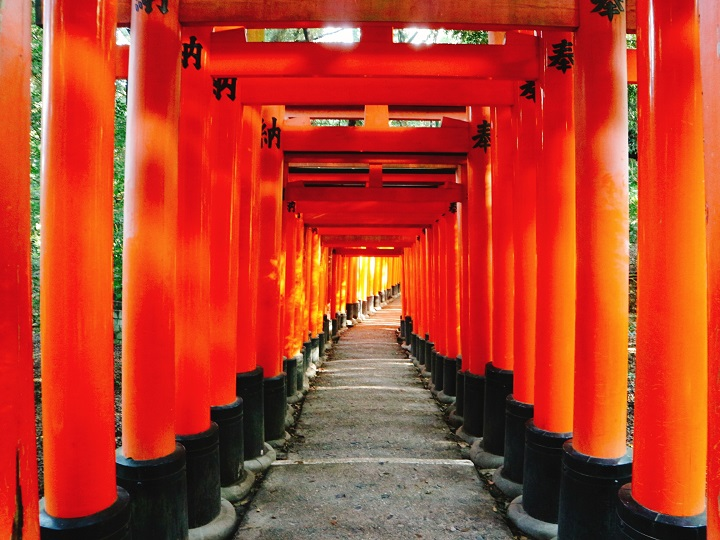 Long Red Tunnel 「Fushimi Inari Taisha Shrine」