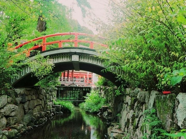 そり橋と光琳の梅