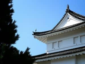守护见证着日本历史的「元离宮二条城」