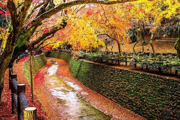 秋季的北野天满宮
