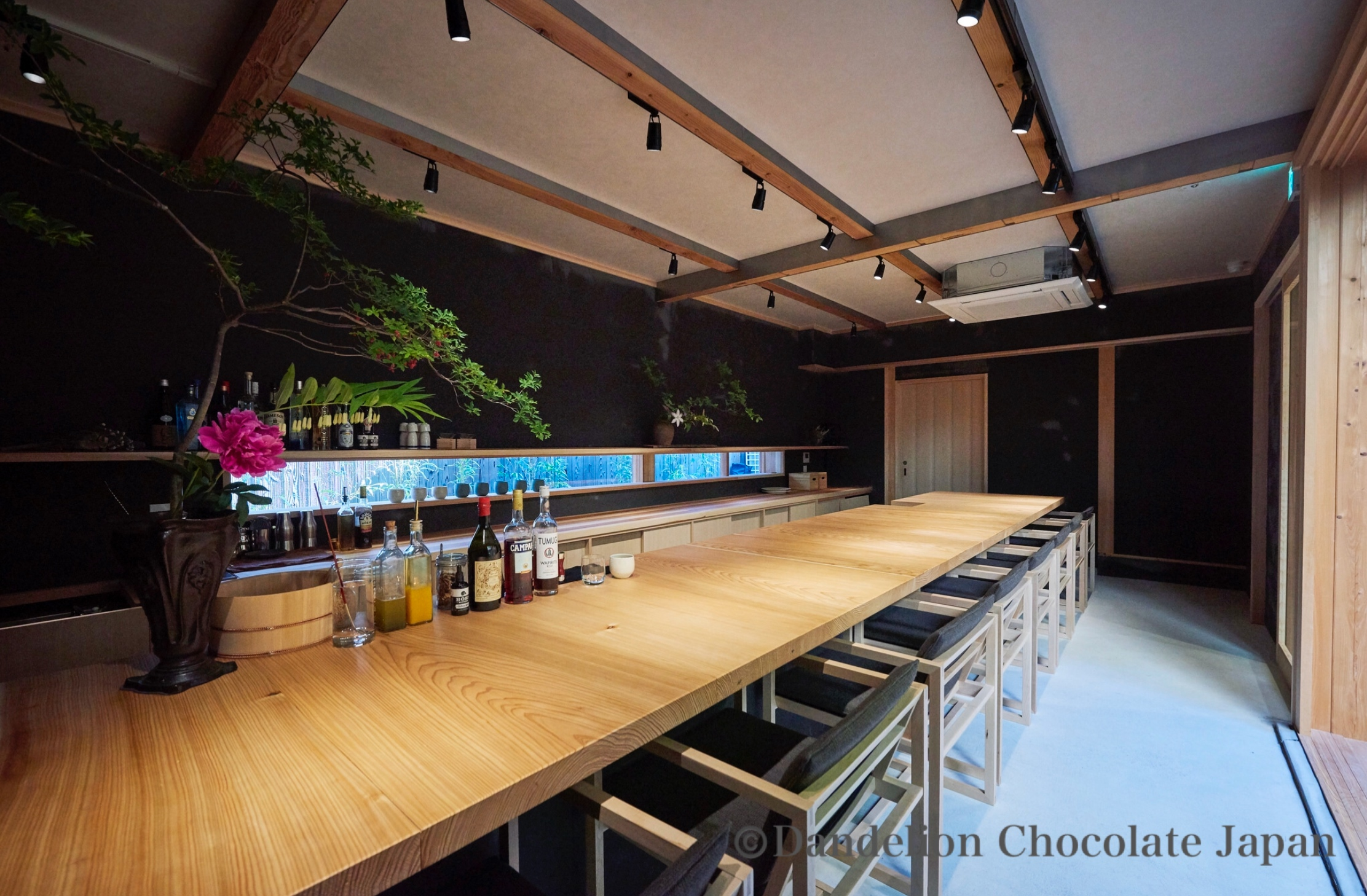New attractions of Cacao