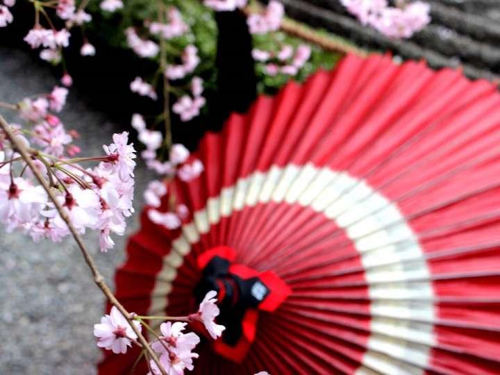 日本の原風景を連想させる古風な美しさ