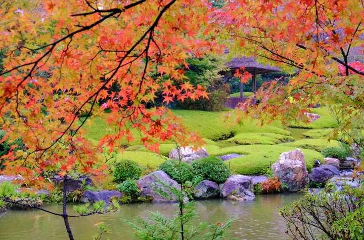 秋色に染まる庭園散策