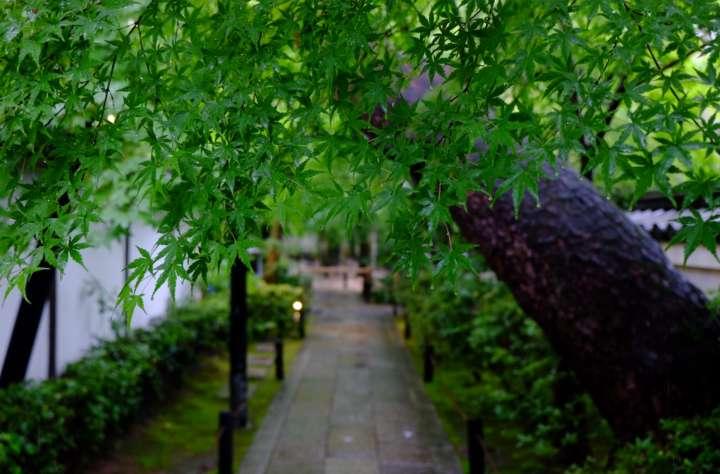 気づきをもたらす禅寺の庭
