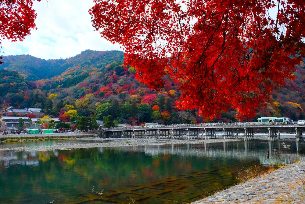 从这里开始京都之旅。一年四季都可观看到美丽风光岚山的标志性建筑「渡月桥」