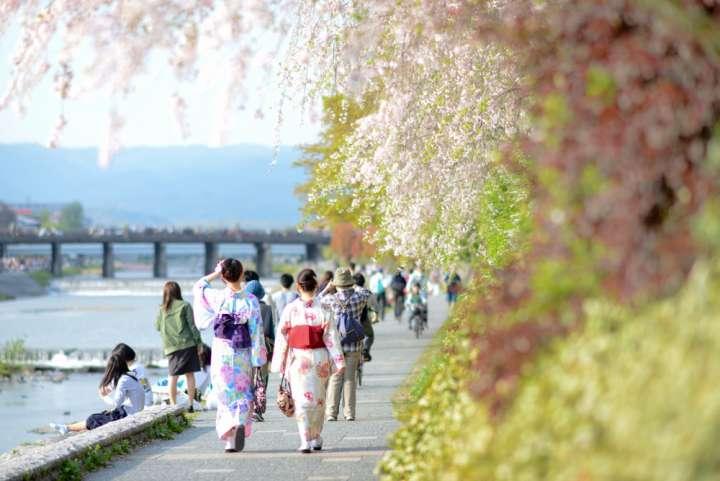 人気の高い京都観光