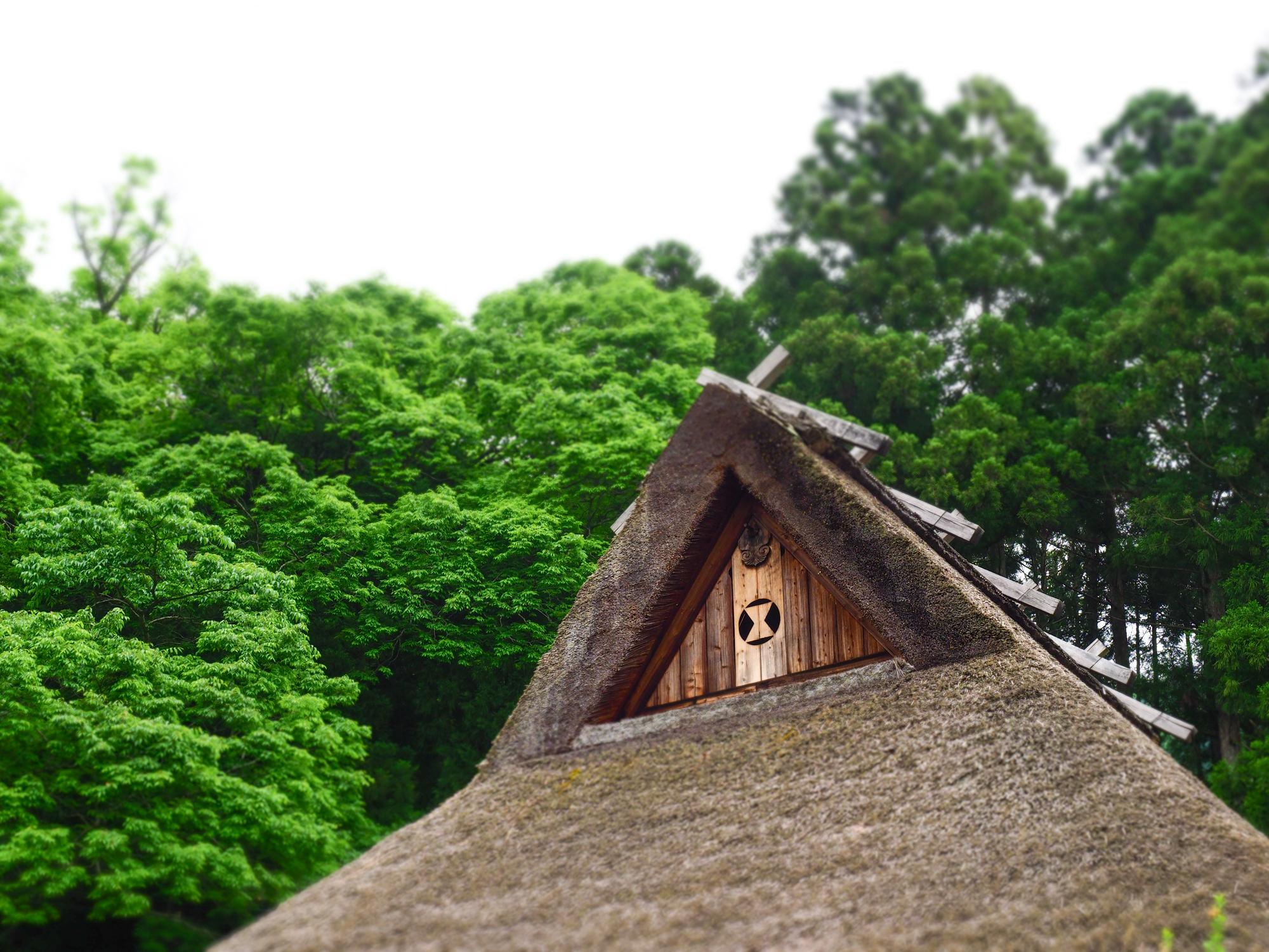 可以感覺到古代的茅草屋民家