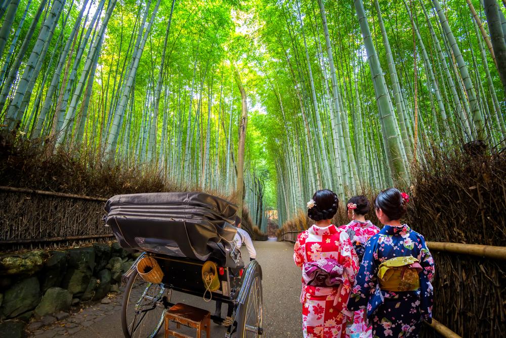 充分享受岚山的魅力!传授旅游观光小窍门 岚山基本篇