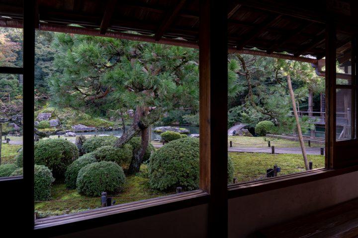 優雅な庭園