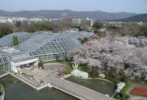 교토부립식물원