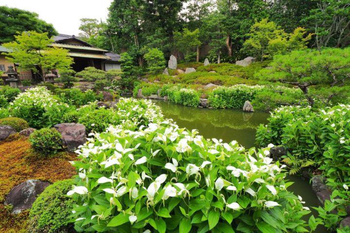 Ryosoku-in Temple
