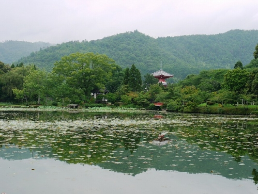Osawa-no-Ike Pond