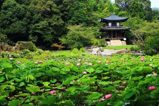 Kanshūji Temple