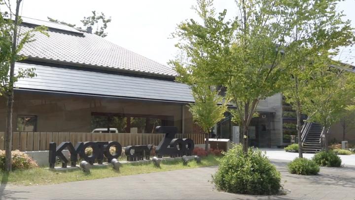 京都市動物園で人気の癒しの動物達を紹介します。